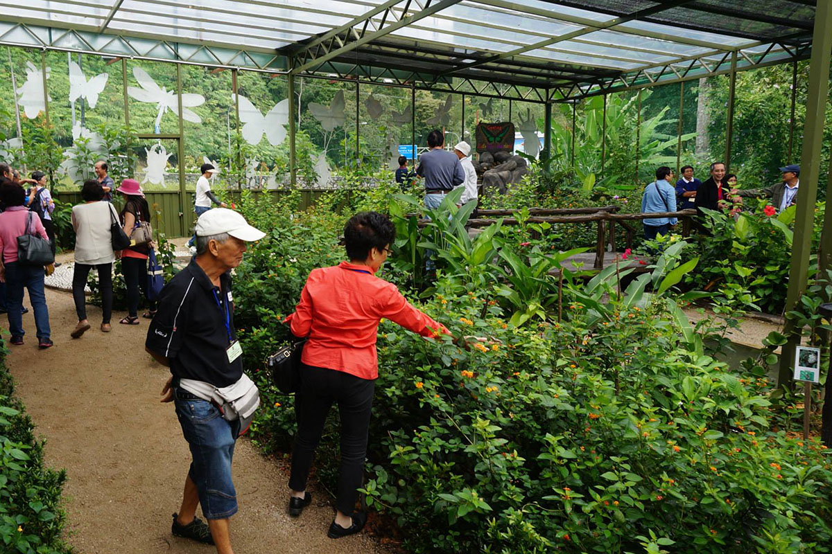 Image result for happy bee farm genting